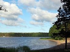 Берег  Липовского озера, Курголово