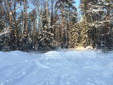Земельный  участок в деревне Полтьево