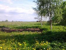 Участок  в д.Войносолово