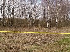 Земельный  участок в деревне Талдомского