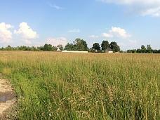 Земельный  участок в д.Коковино