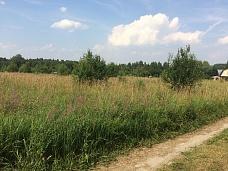 Земельный  участок в д.Алексино