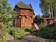 Дачный  участок с домиком на кромке леса,