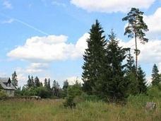 Живописный  земельный участок
