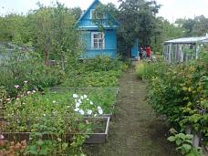 Дача  в тихом садоводстве