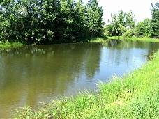 Земельный  участок в КП «Бисеровские озер