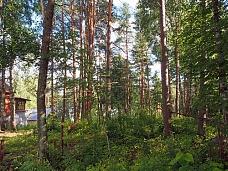 Участок  в 100 м. от озера Чернявское.